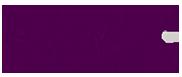 FIDEM Logo